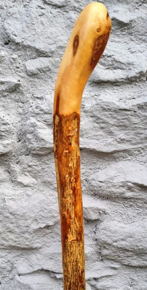 Natural Walking Cane