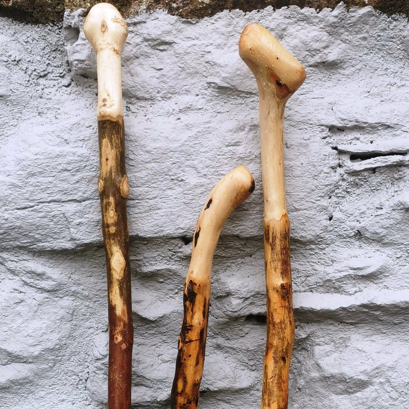 Hiking Staffs